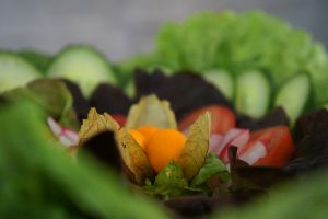 salat-closeup-final4D09CFB7-729F-EE84-157D-DC0FE9E15714.jpg